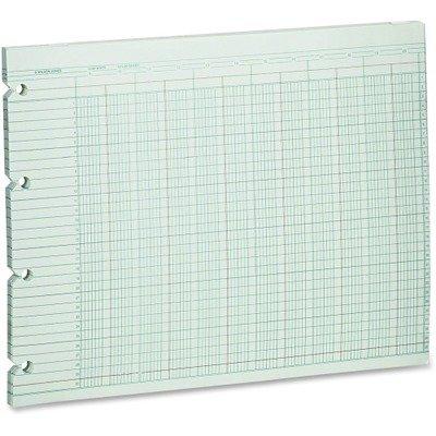 WLJG5012 - Wilson Jones Accounting Sheets