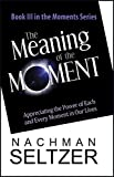 img - for The Meaning of the Moment: Appreciating the Power of Each and Every Moment in Our Lives book / textbook / text book