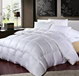 LUXURIOUS TWIN / TWIN XL Size Siberian GOOSE DOWN Comforter, 1200 Thread Count 100% Egyptian Cotton 750FP, 50oz, 1200TC, White Solid