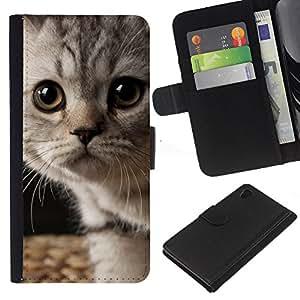 Kitten American Shorthair Wirehair - la tarjeta de Crédito Slots PU Funda de cuero Monedero caso cubierta de piel Sony Xperia Z4v / Sony Xperia Z4 / E6508