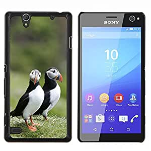 - Bird - - Cubierta del caso de impacto con el patr??n Art Designs FOR Sony Xperia C4 Queen Pattern