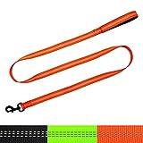 Vcalabashor trade; Dog Leash/Reflective Stitching/Neoprene Padded Handle/6 FT for Dog Training Daily Walking/Orange