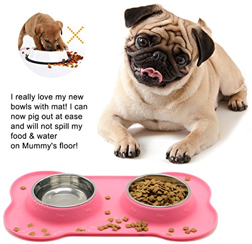 Non Skid Dog Food Bowl For Small Dogs