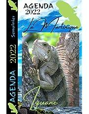 Agenda 2022 Martinique Iguane: Semainier Professionnel ou personnel / Journal de bord 2 pages par semaine / Format pratique 6x9po / 135 pages / Bilans et objectifs mensuels / Voyage