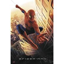 Spider-Man - Movie Poster / Print (Spidey Swinging Through New York City) (Size: 69cm x 101.5cm)