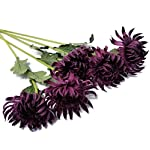 Floral-Kingdom-Artificial-Real-Touch-24-Chrysanthemum-Flowers-Fuji-Spider-Mum-for-Home-Office-Weddings-Bouquets-Pack-of-5-Plum