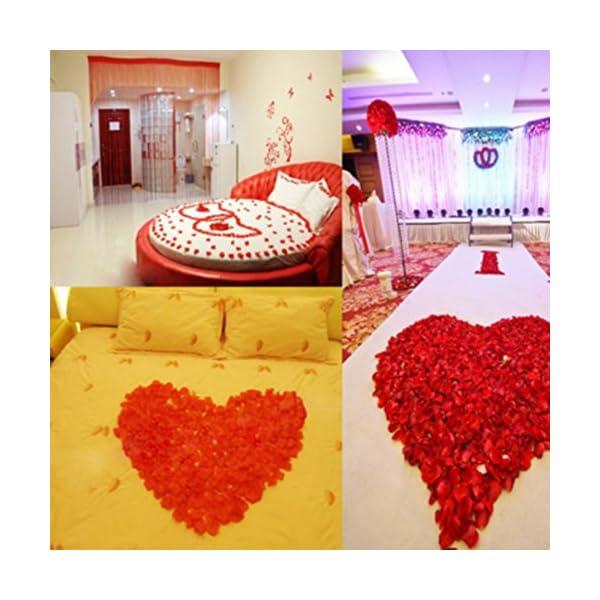 Mydio 2000 Pack Dark Red Silk Rose Petals Wedding and Birthday Flower Decorative Rose Petals Creative Props(2000 pcs)