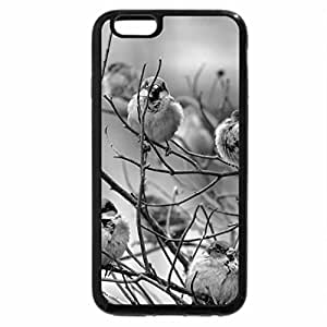 iPhone 6S Case, iPhone 6 Case (Black & White) - Sparrow on branches