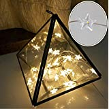 Naladoo 2 M 10 lights Star String LED Lights Christmas Fairy Lights, Indoor / Outdoor Decorative Light, Battery Powered for Patio Garden Party Xmas Tree Festival Decoration (Yellow)