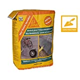 Sika France S.A.S 152712 Mortar Primer for