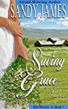 Saving Grace (Safe Havens Book 1)