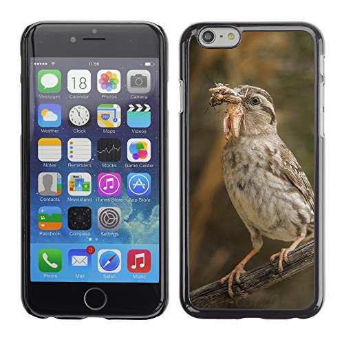 Premio Sottile Slim Cassa Custodia Case Cover Shell // F00007219 oiseau manger // Apple iPhone 6 6S 6G PLUS 5.5""