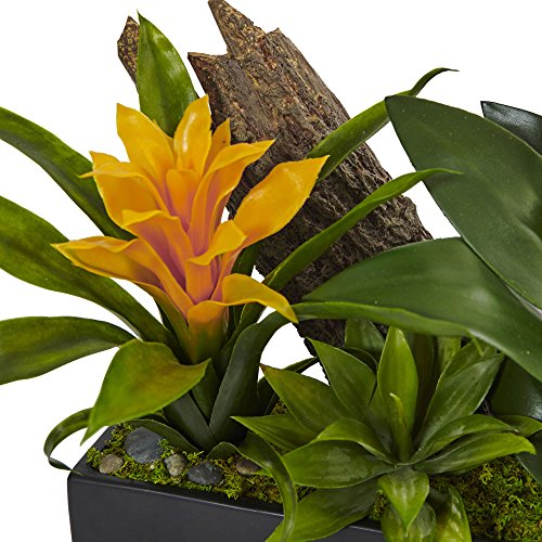 Buy nearly natural bromeliads in rectangular planter