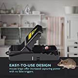 Diaotec Mouse Trap, Mice Rat Rodents Killer Catcher Snap Traps - Effective Sensitive Rodent Control (3 Pack+1)