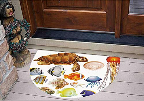 3D Semicircle Floor Stickers Personalized Floor Wall Sticker Decals,Animals Tortoise Jellyfish and Fishes Exotic Cartoon,Kitchen Bathroom Tile Sticker Living Room Bedroom Kids Room Decor Art Mural D31