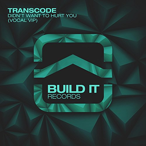 Didnt Want To Hurt You Vocal Vip By Transcode On Amazon Music