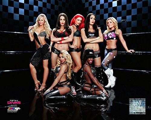 La Belle Et Lab - WWE Bella Twins Total Divas Ring Photo (Size: 8