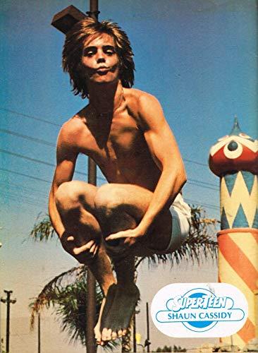 "Shaun Cassidy - shirtless - Kiss - 11"" x 8"" Teen Magazine Clipping - year 1977"