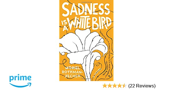 Sadness Is a White Bird: A Novel: Moriel Rothman-Zecher