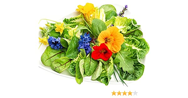 Semillas comestibles de las hierbas y de las flores: Amazon.es: Jardín