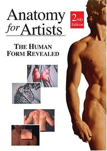 Anatomy For Artists: The Human Form - For How To Measure Swimsuit