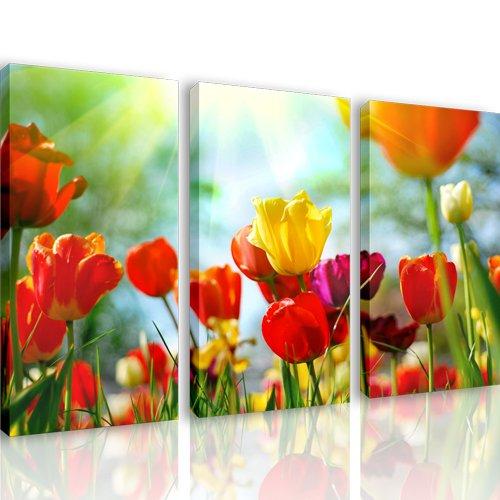 Mnd10   tulipy   3 quadri moderni 120x80 cm   stampa digitale su ...