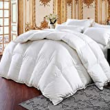 Three Geese Luxurious Goose Down Comforter King Size Duvet Insert All Seasons Down Comforter,100% Cotton Cover Filled 60 oz 700+ Fill Power,Hypoallergenic&Durable