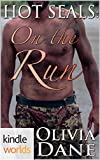 Hot SEALs: On the Run (Kindle Worlds Novella)