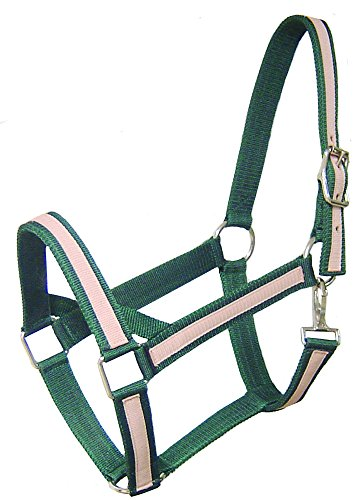 Derby Originals Heavy-Duty Triple Layer Two-Tone Nylon Draft Horse Halters - Available in Multiple Colors
