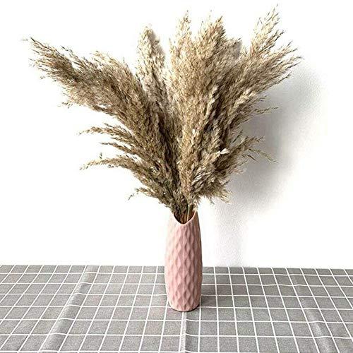 YueLove Herbe de la Pampa, 50-60cm Naturel Pampa Fleur Bouquet de Fleurs Sechees pour Vases, Boho Decoration Chambre…