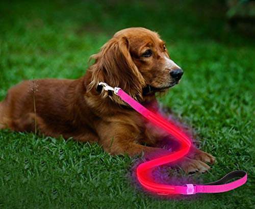 Moco Best Light Up Rechargeable 2 Strip LED Nylon Dog Leash - 47.2 inches, with 3 Light Settings and Metal Buckle - Includes USB Charger - Keep Pet Safe and Visible at All Times (Pink)