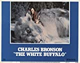 "The White Buffalo 1977 Authentic 11"" x 14"" Original Lobby Card Charles Bronson Western"