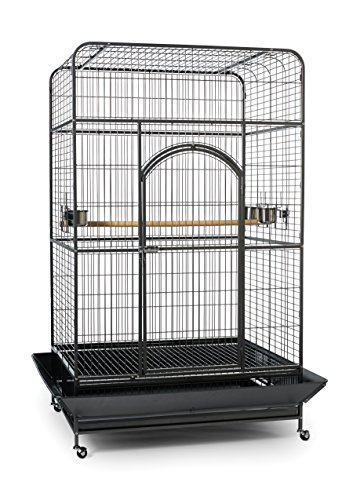 Prevue Pet Products Empire Bird Cage,