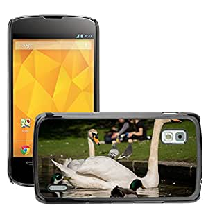 Super Stella Slim PC Hard Case Cover Skin Armor Shell Protection // M00144686 Swans Bird Cygnus Fly Wings Feather // LG Nexus 4 E960