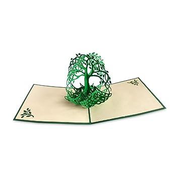 Amazon.com: Papel oso tarjeta Pop-up con diseño de árbol de ...