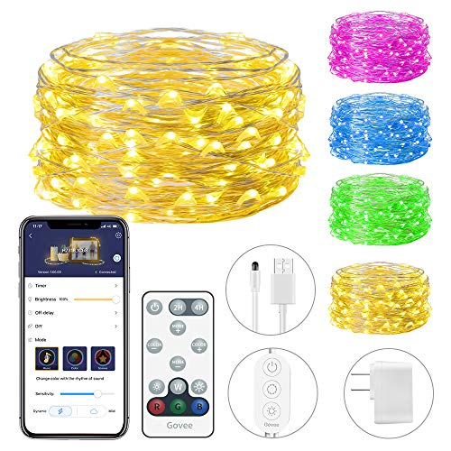 Rgb Color 100 Led Light String