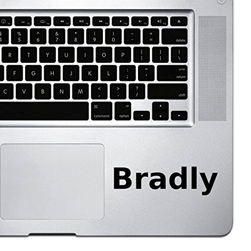 (2x) StickAny Palm Series Bradly Sticker for Macbook Pro, Chromebook, and Laptops (Black) ()
