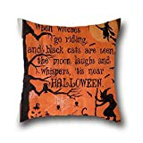 Mr Ozzello Oil Painting Black Cats Halloween Throw Pillow Covers Vintage ( 20*30 )