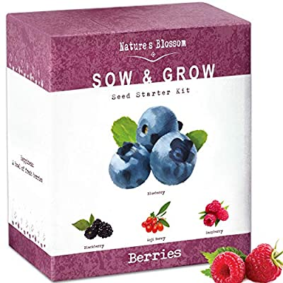 Nature's Blossom Berries Seed Starter Kit. Easily Grow 4 Berry Fruits from Organic Seeds. Unique Garden Gift for Women and Men