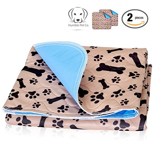 Quilted Dog Crate - Washable Pee Pads for Dogs Whelping Reusable (2-Pack) Quilted Large 35 x 31 Extra Absorbent Layered Waterproof Mat Puppy Adult Senior Pets Pooch | Home Travel or Crate Training Whelping Dog Wee Wee