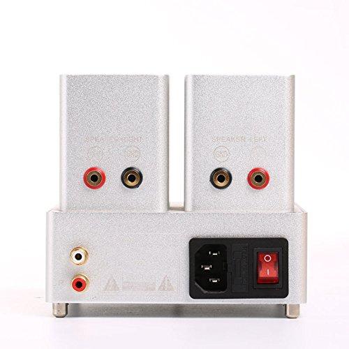 X Ionm Bl on 1 Amp 250v Mini Fuse