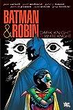Best Batman And Robins - Batman & Robin: Dark Knight Vs. White Knight Review