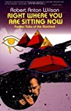 img - for Right Where You Are Sitting Now: Further Tales of the Illuminati (Visions Series) by Robert Anton Wilson (1993-01-25) book / textbook / text book