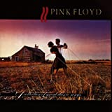 Collection of Great Dance Song by Pink Floyd (2000-04-25)