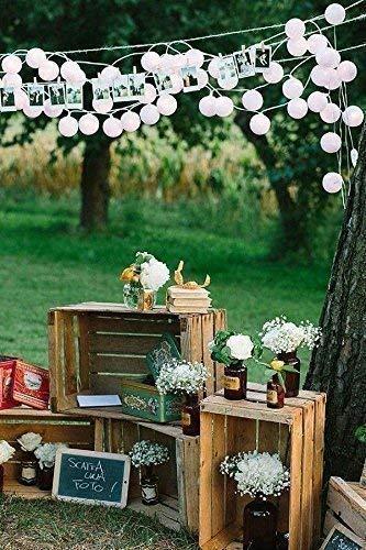Natur Regal Dekoration Set 3 Weinkiste Obstkiste Holzkiste wie aus dem Alten Land Handgefertigt in Italien