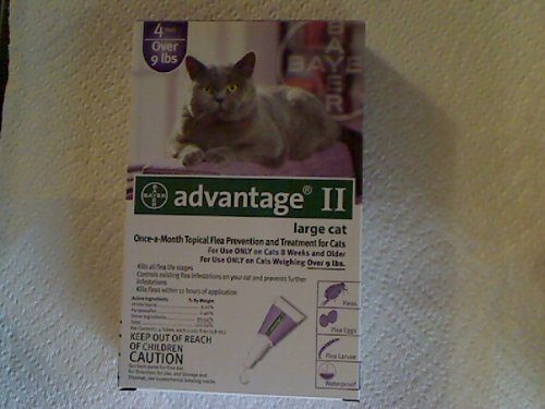 Bayer Advantage II Purple 4-Month Flea Control for Cats 9+ lbs., My Pet Supplies