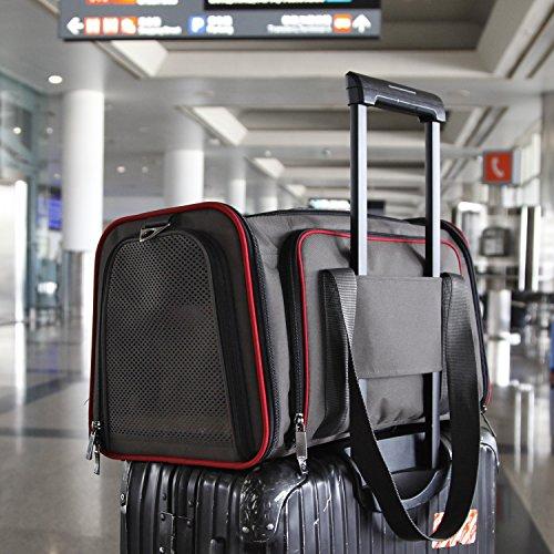 "Petsfit 19""x12""x12"" Expandable Foldable Washable Travel Carr"