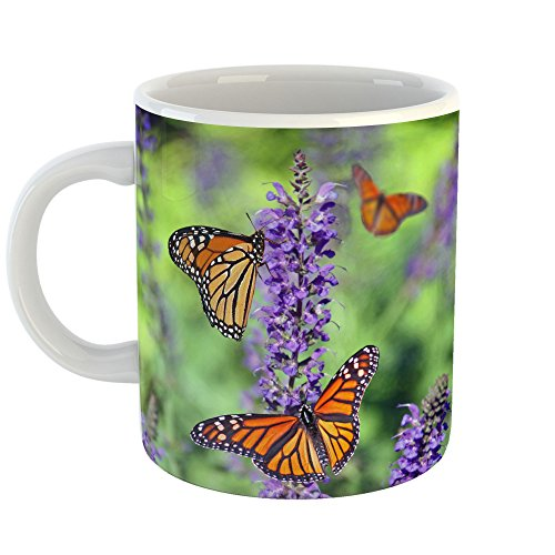 Westlake Art - Butterfly Monarch - 11oz Coffee Cup Mug - Modern Picture Photography Artwork Home Office Birthday Gift - 11 Ounce (51F5-0CAF2)
