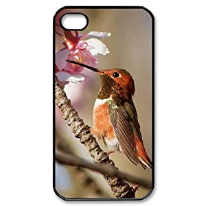 Hard Shell Case Of Hummingbird Customized Bumper Plastic case For Iphone 4/4s