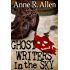 Ghostwriters In The Sky (The Camilla Randall Mysteries Book 1)